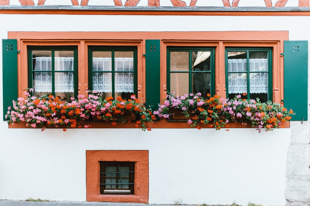 Colorful flowers decorate the windows in contrast to the white wall.
